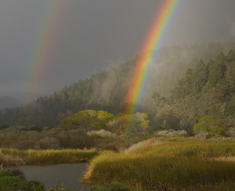 Waddell Rainbow 4x5